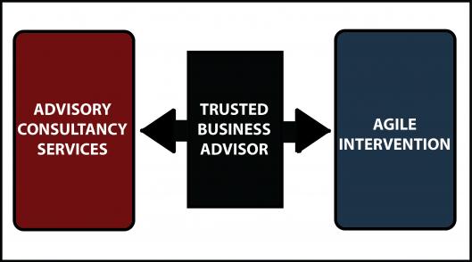 Diagram Advisory Services