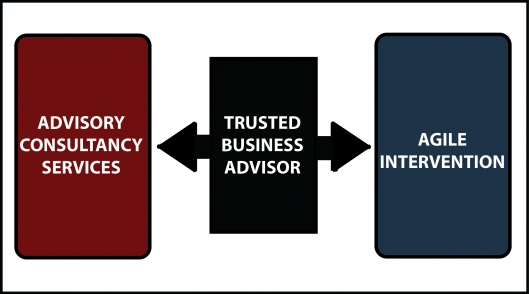 Diagram Advisory Services